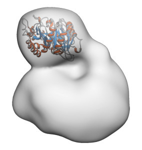 1407_Protein_block