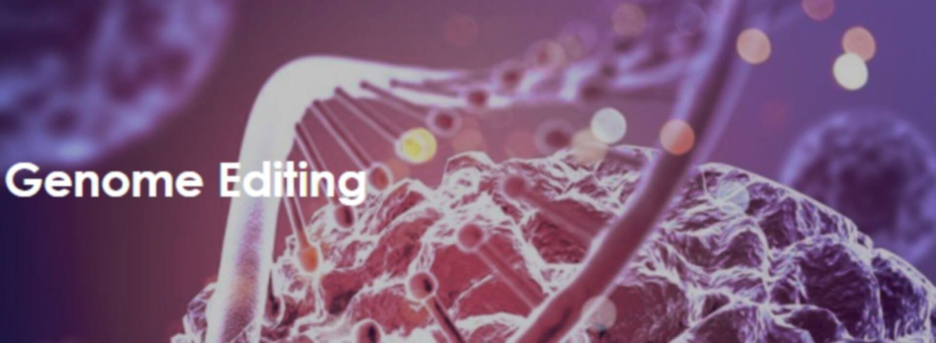 Introduction to Genome Editing