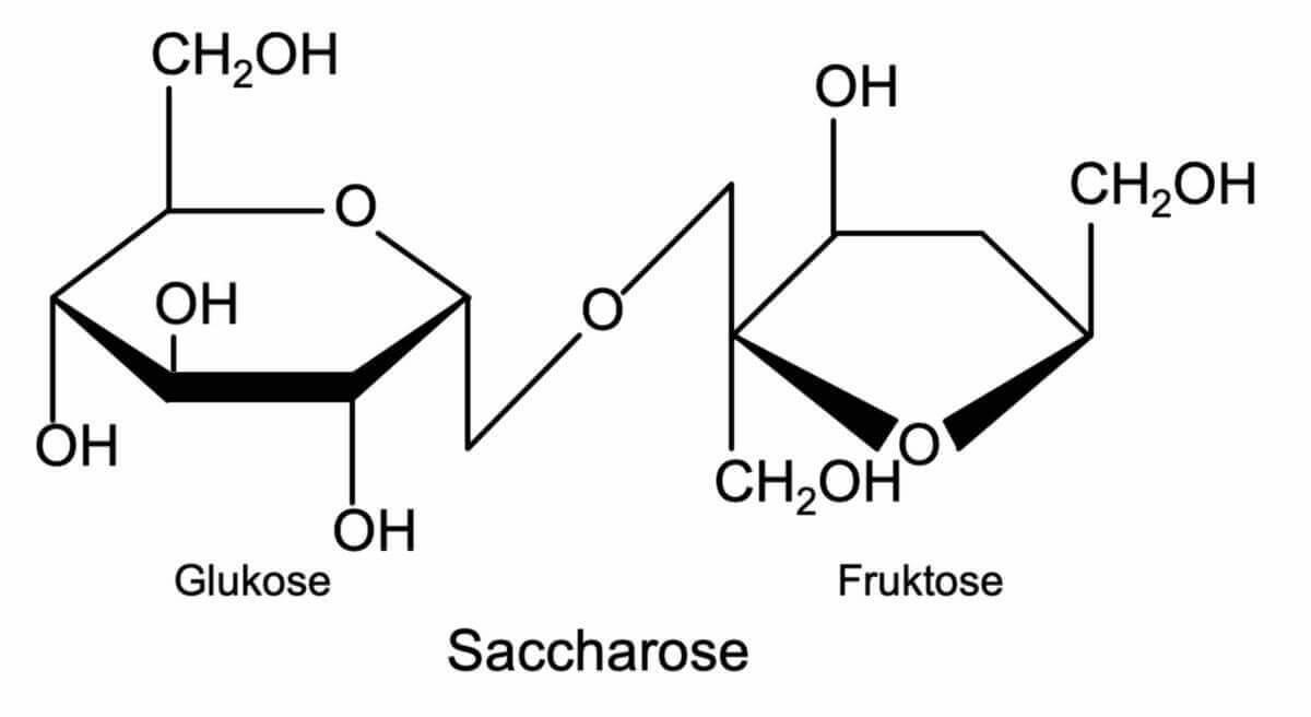 Saccharose