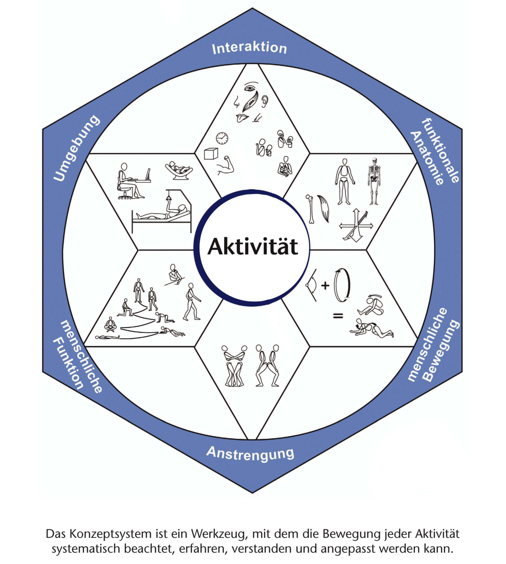 Sistema del concepto de kinestesia (esquema)
