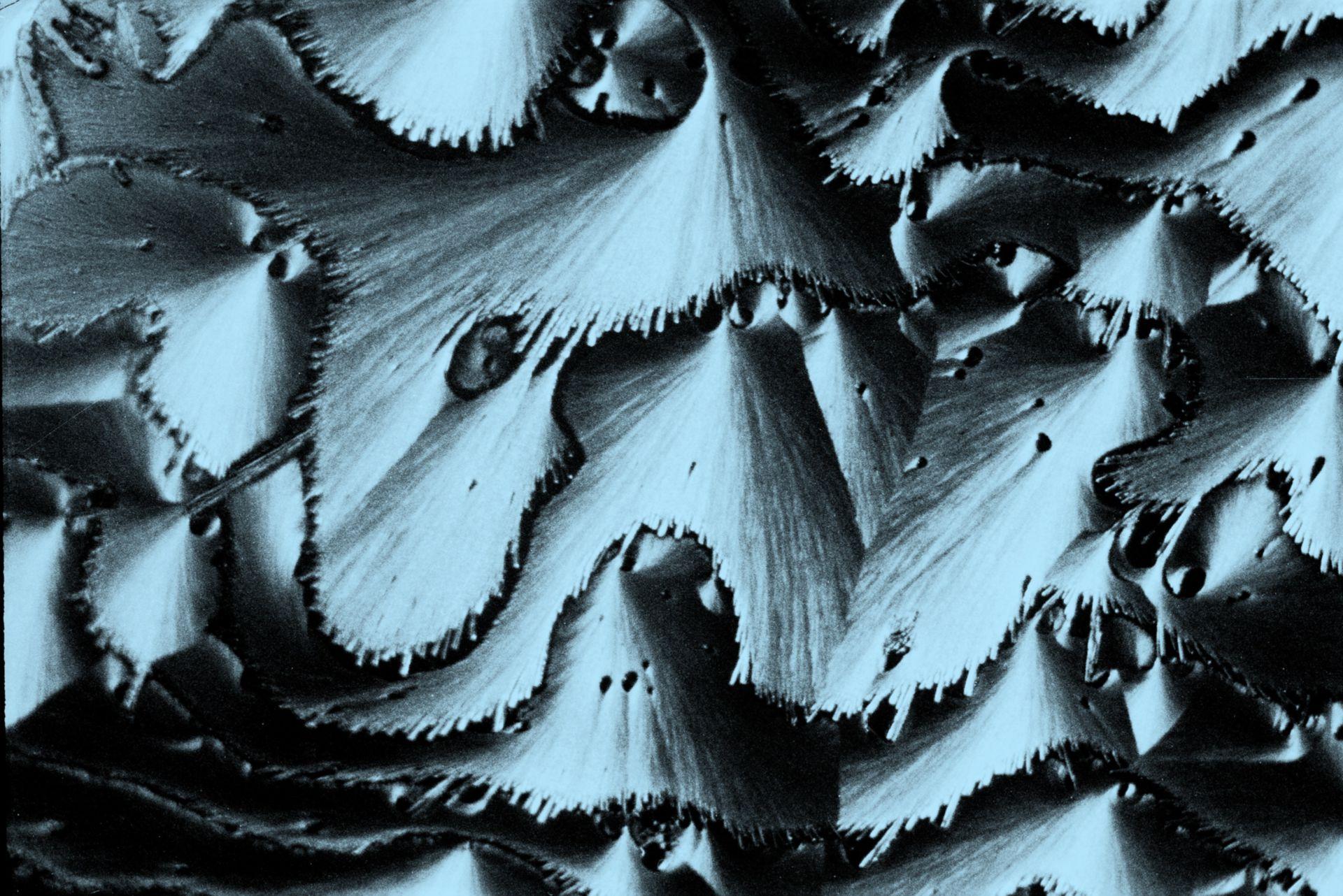 Thiourea + carbaethopendezinium bromuro