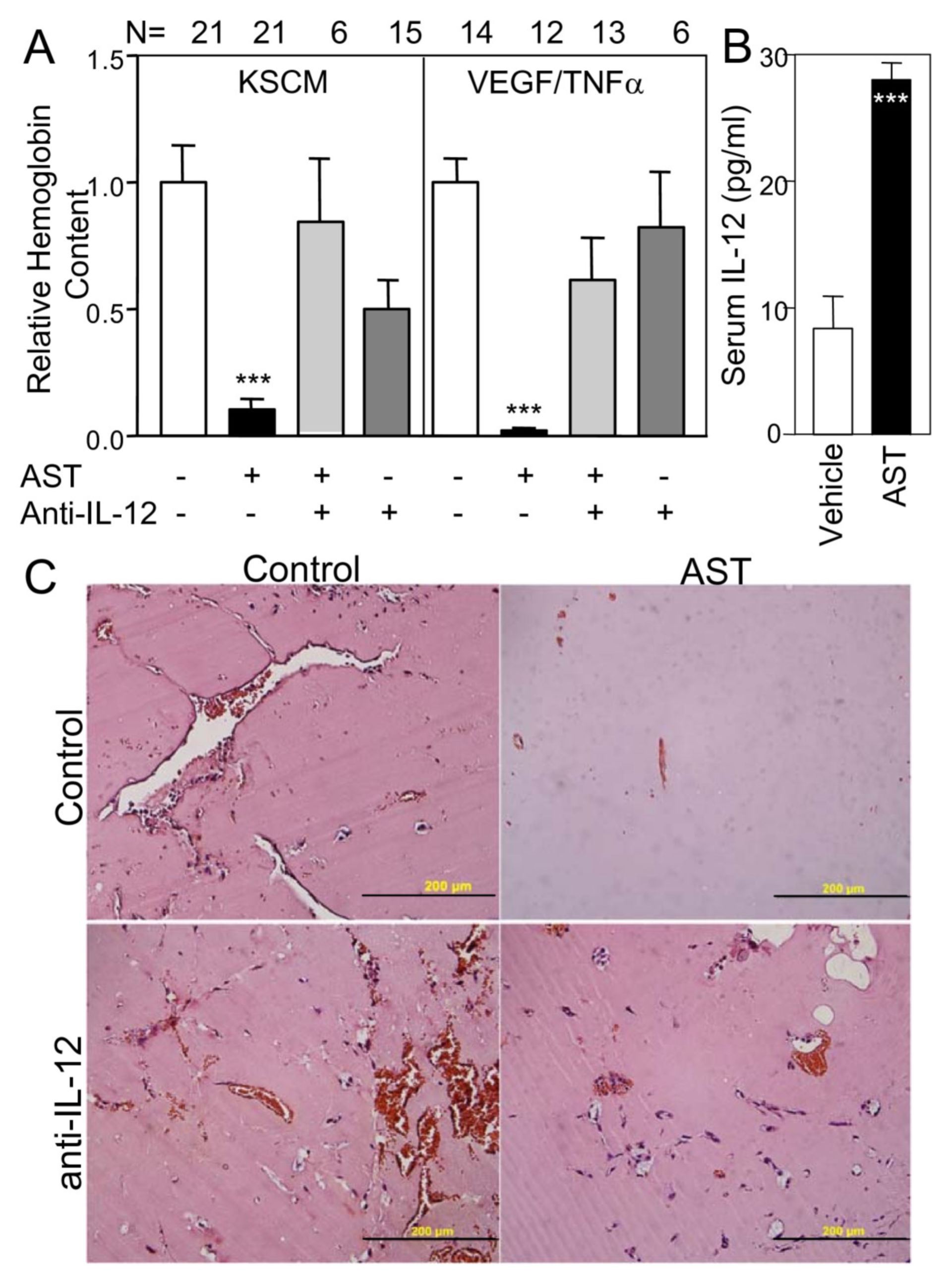 Reversion of angiostatin angiogenesis inhibition by function blocking antibodies to IL-12