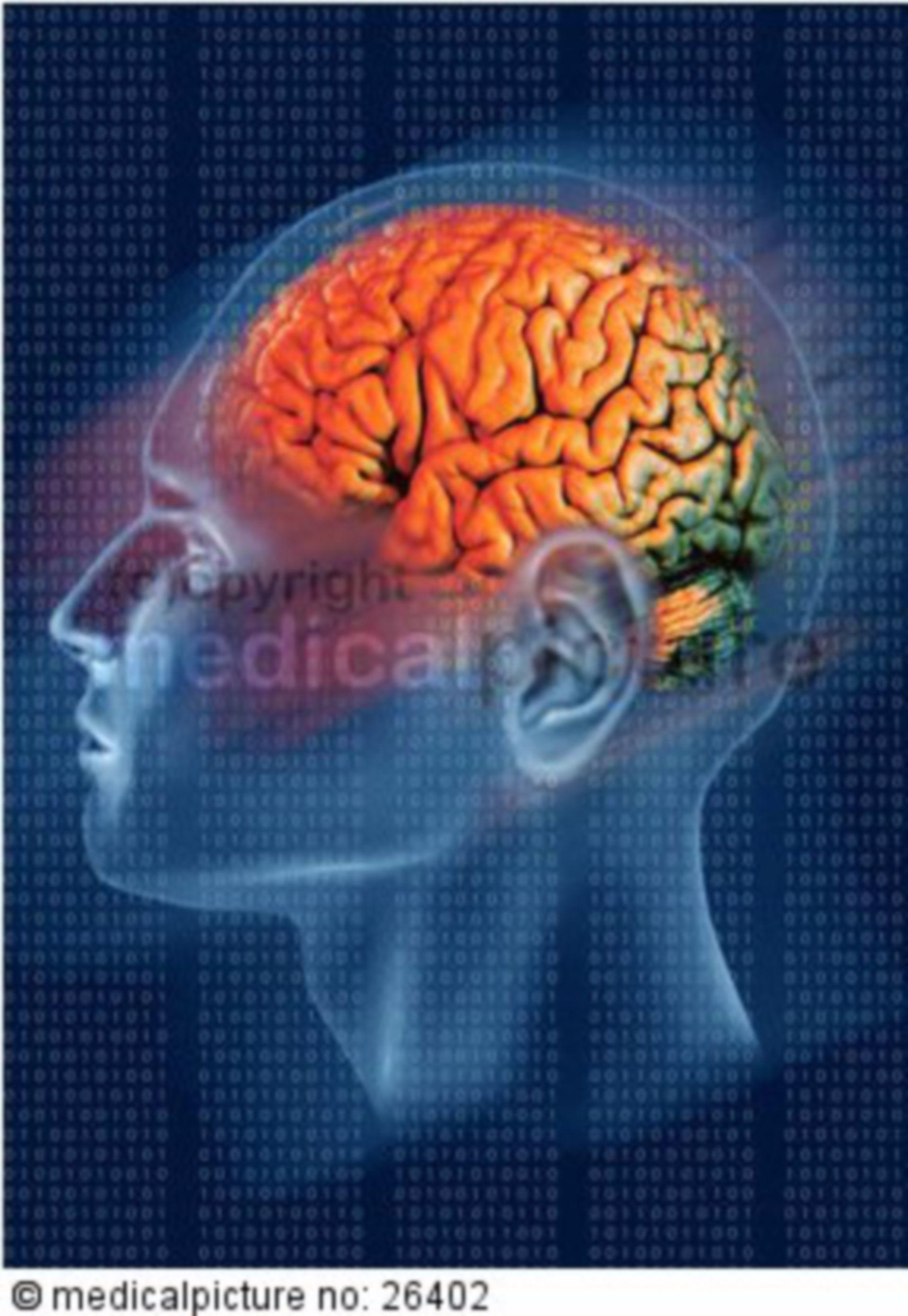 Gehirn mit binaerem Code, brain with binary code