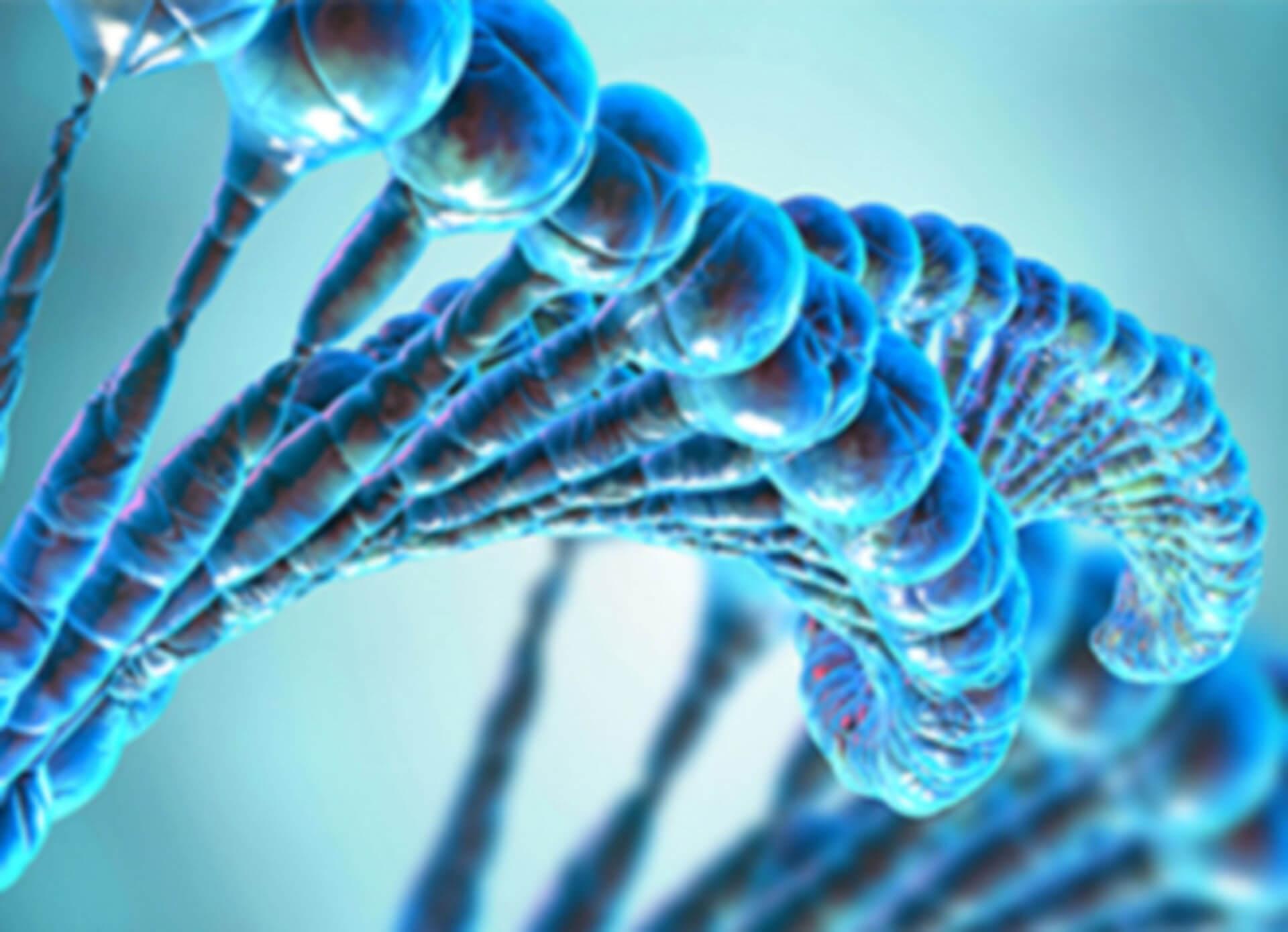 RNA Demethylases Product