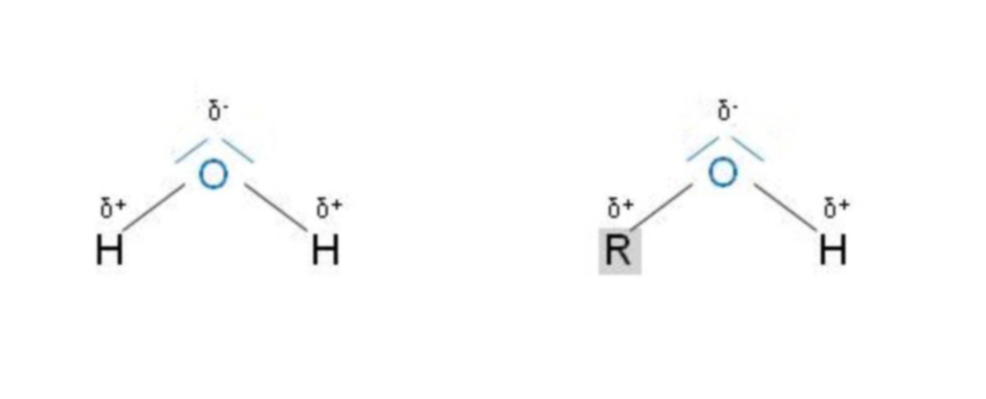 Molecola di acqua