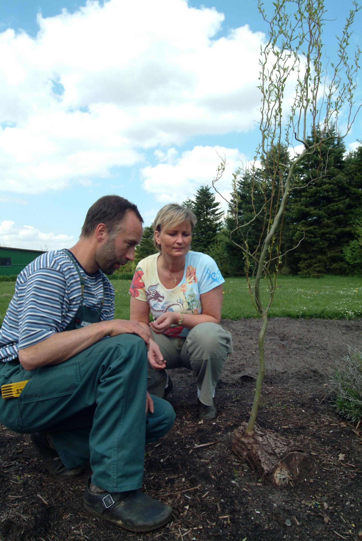 Garten-Therapie