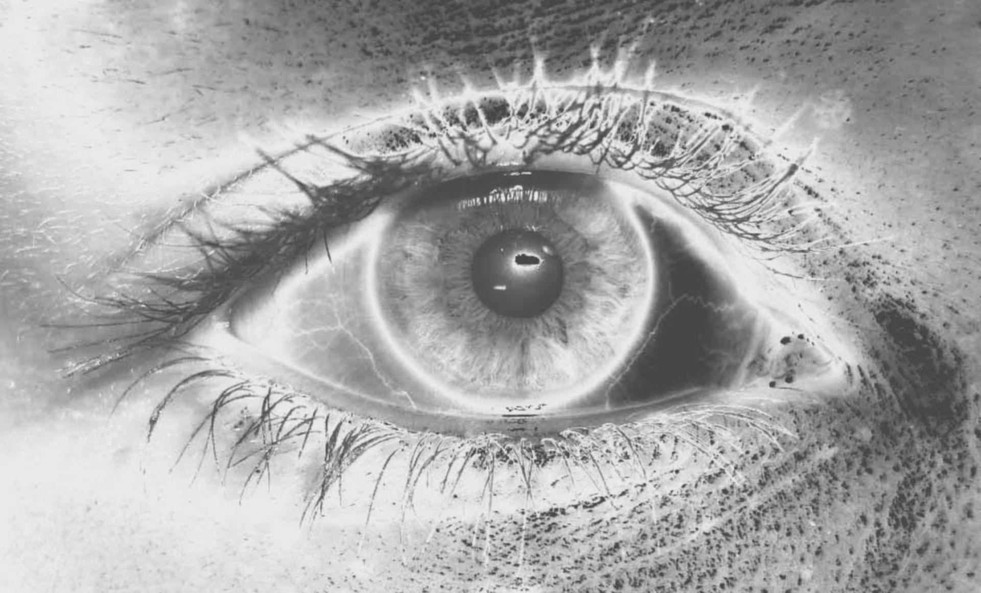 Organo di percezione