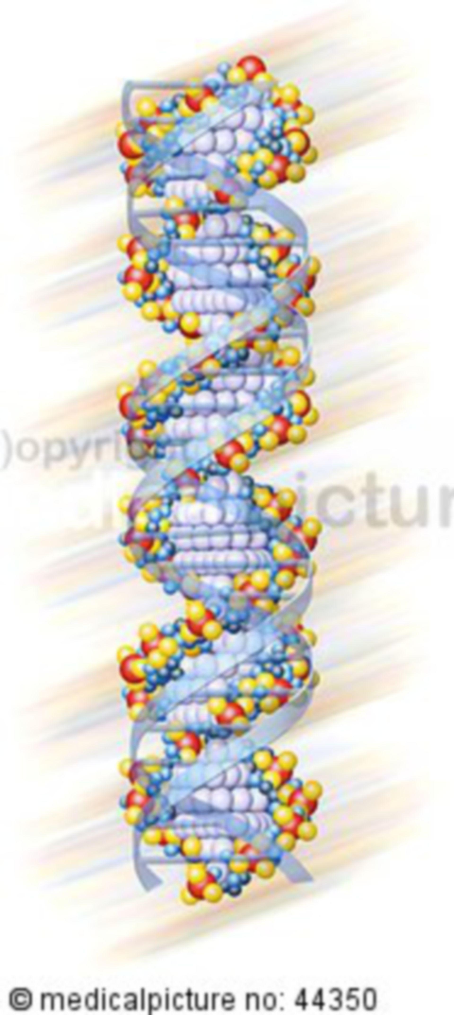 DNS Helix