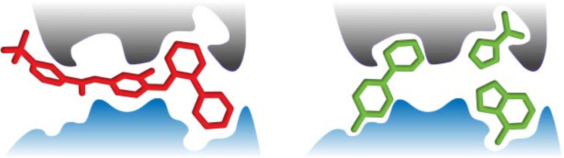 fragment based ligand screening