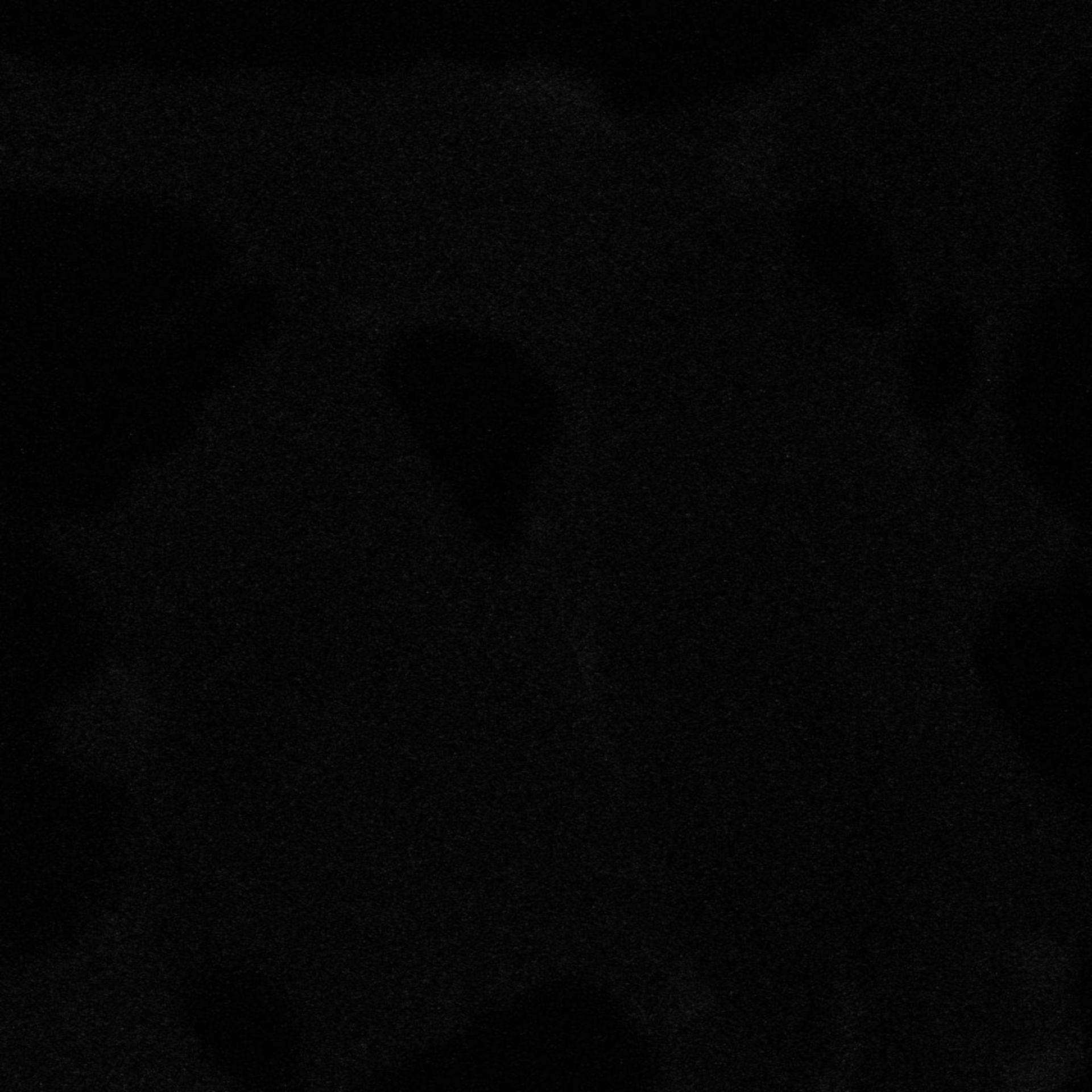Chlorocebus sabaeus (Plasma membrane) - CIL:725
