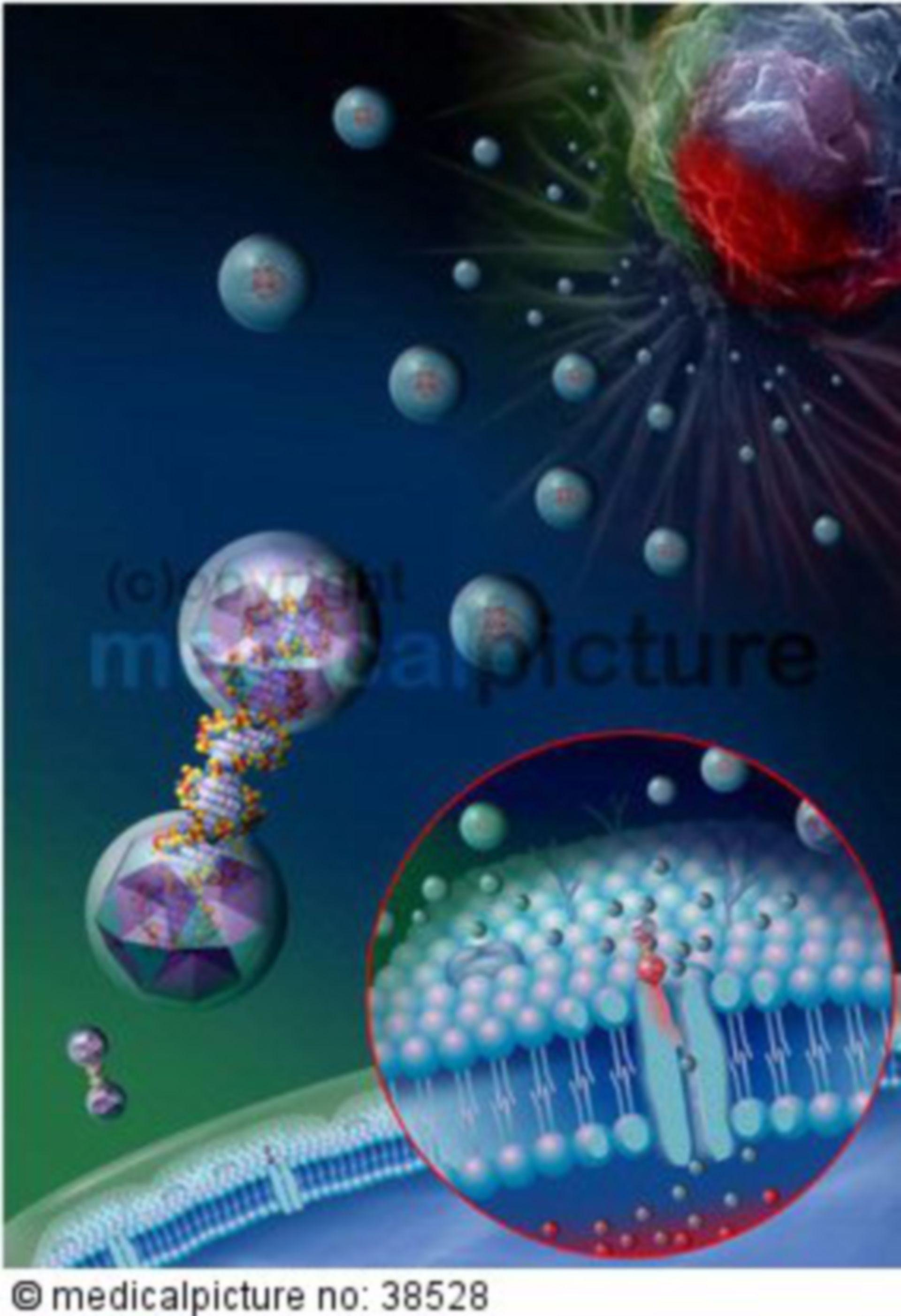 Nanotechnologie in der Therapie
