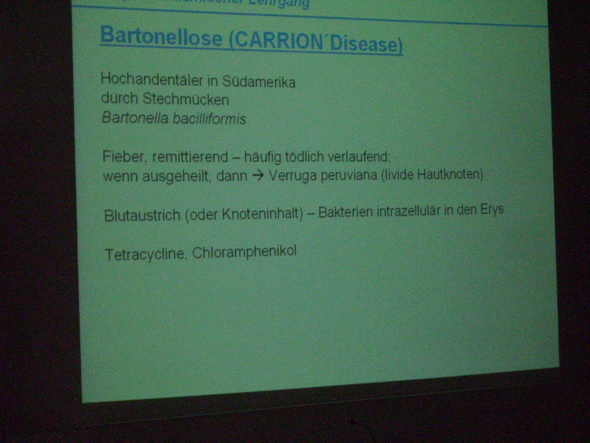 Definition - bartonellosis (Carrion Disease)