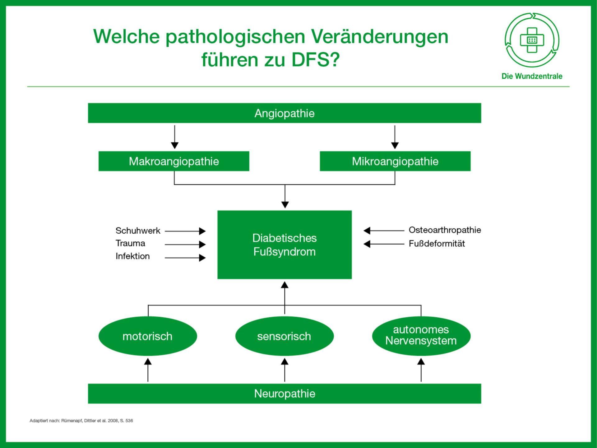 Welche pathologischen Veränderungen führen zum DFS?