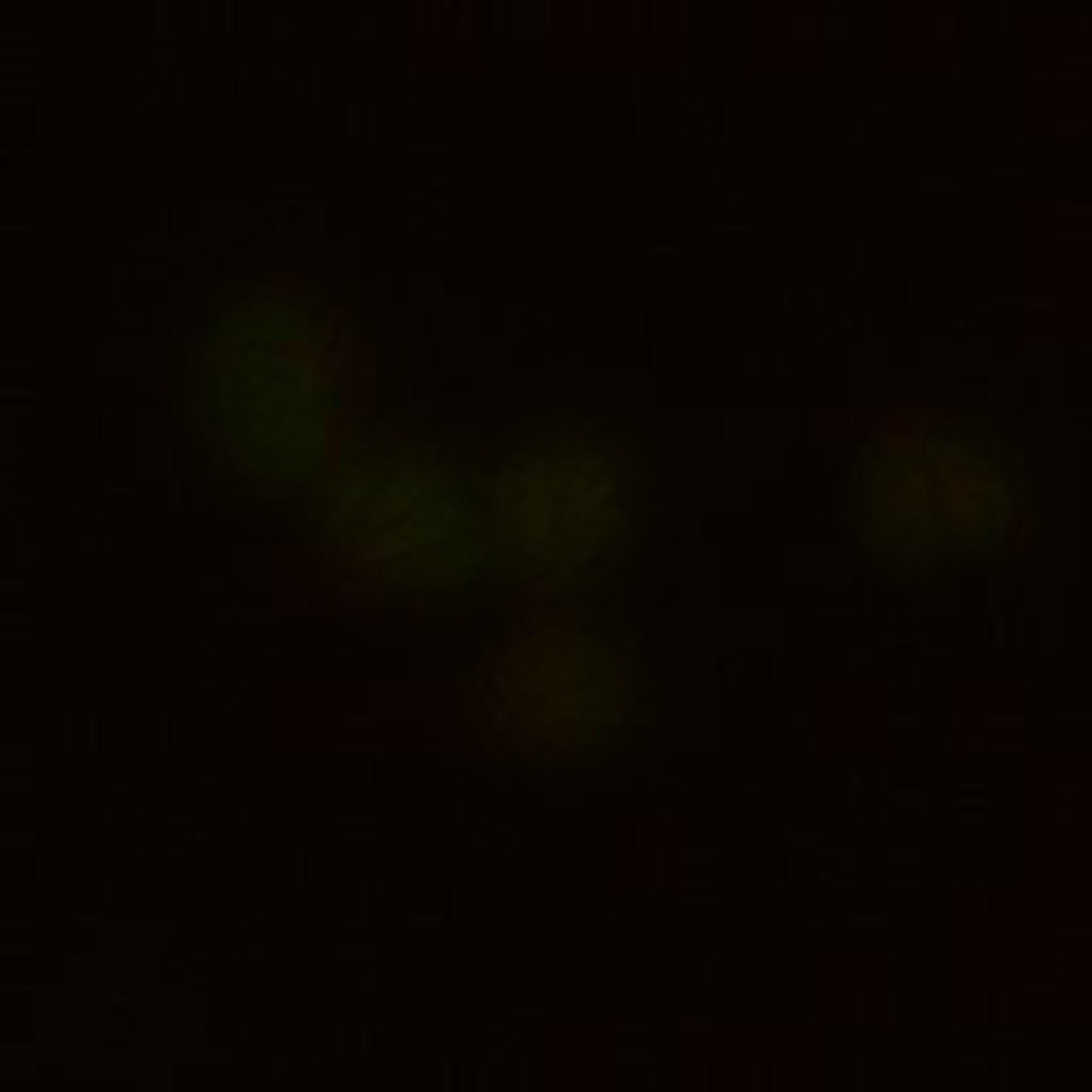 Toxoplasma gondii RH (parte basale delle cellule) - CIL:10523