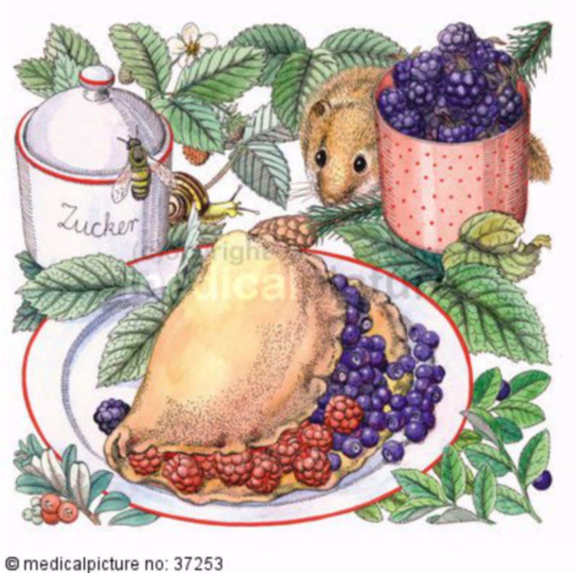 Nagetier, Haselmaus, Himbeere, Pfannkuchen