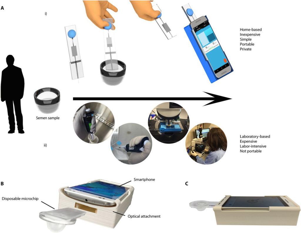 smartphone-sperma