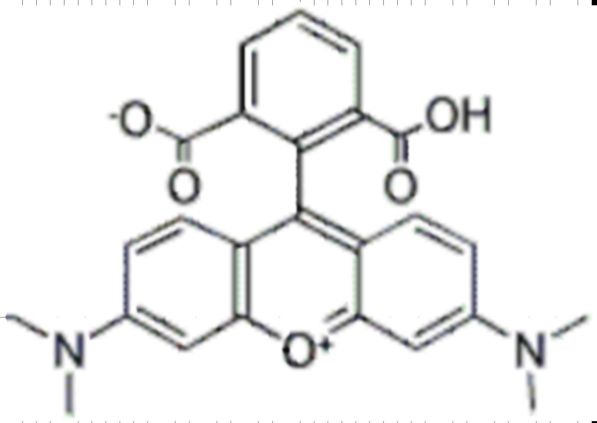 6-Carboxytetramethylrhodamine