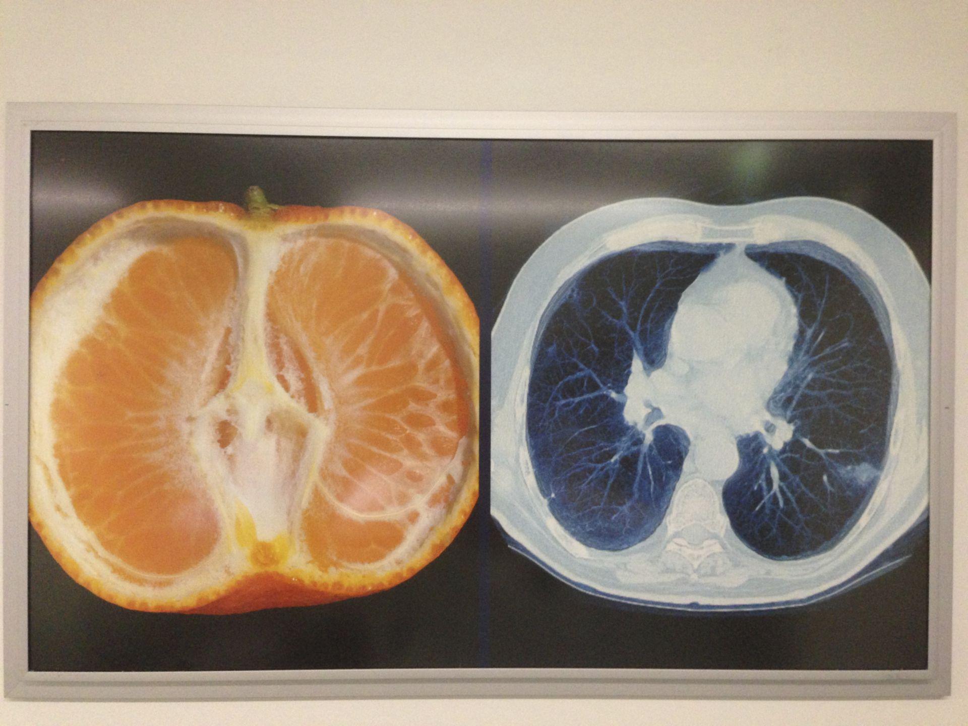 Medizin und Kunst 4