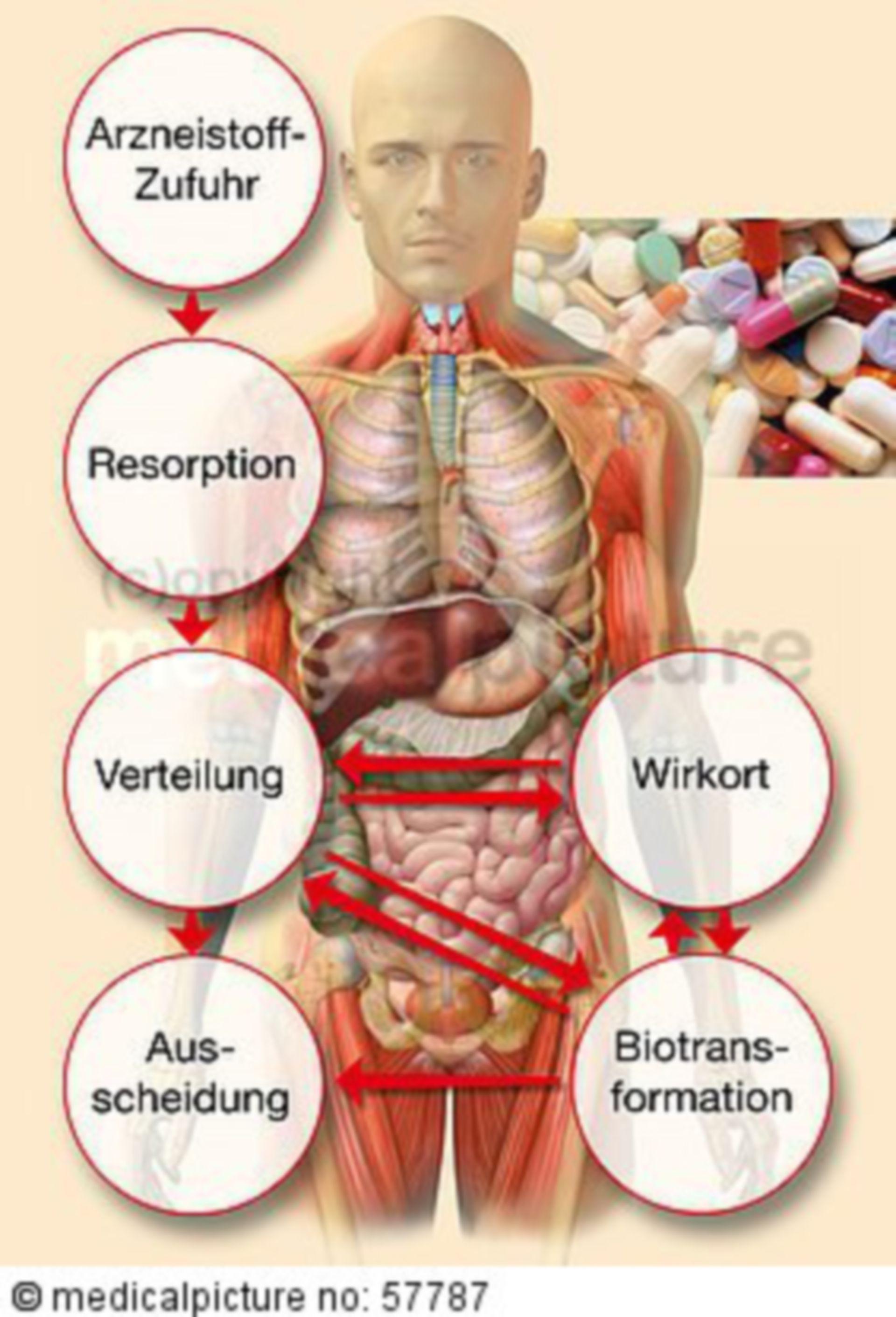 Processing of a medicament