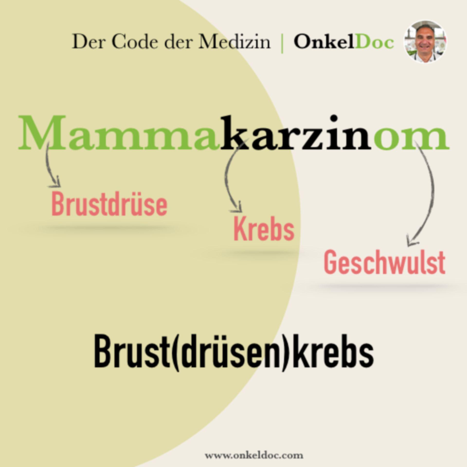 Der Code zum Mammakarzinom
