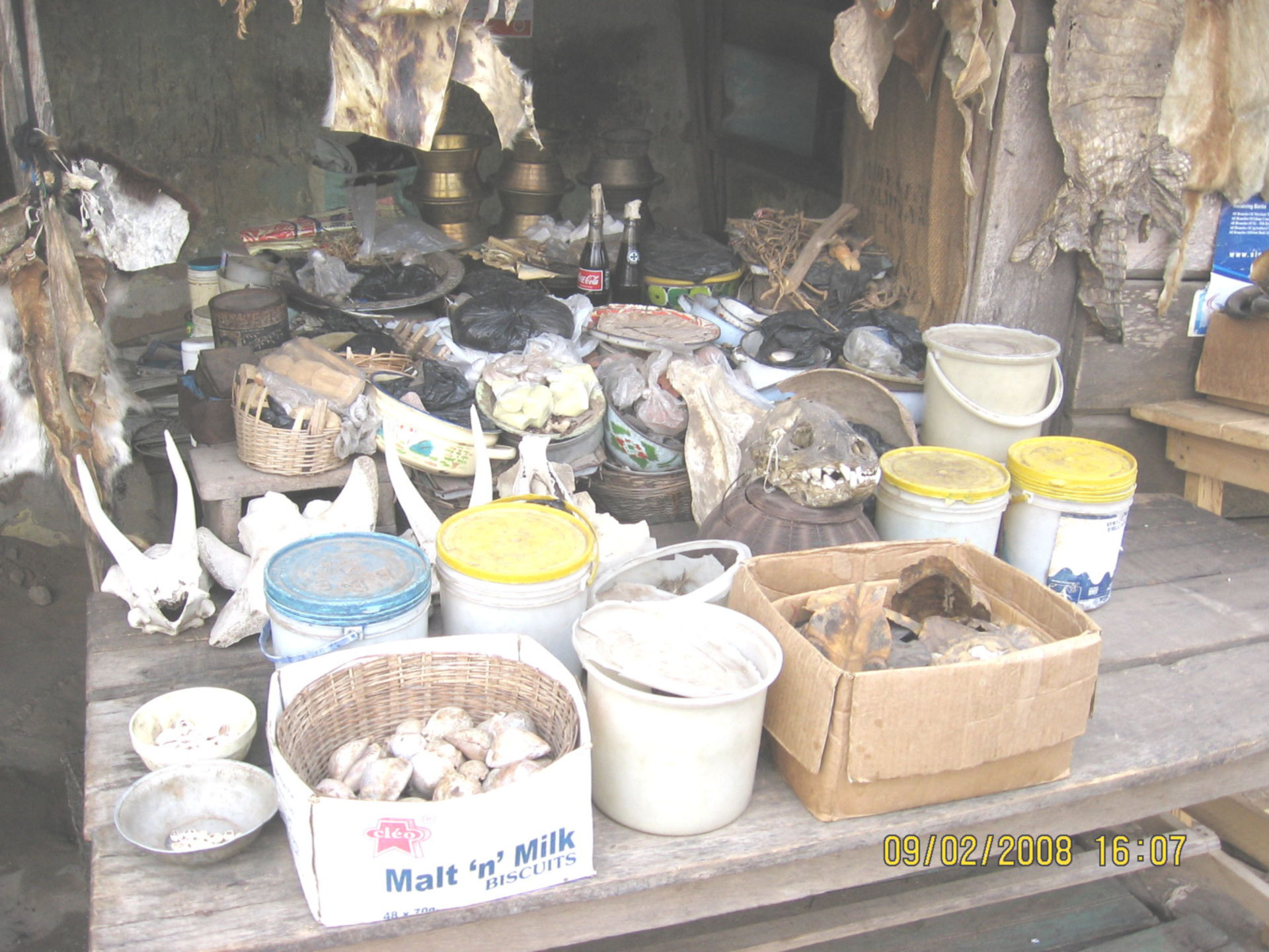 Items for a witch doctor (2)