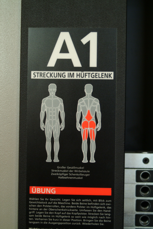 Muskelgruppe