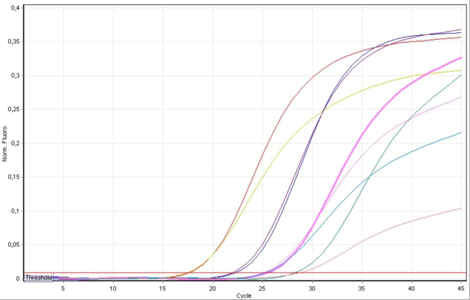 Diagramm einer Realtime-PCR