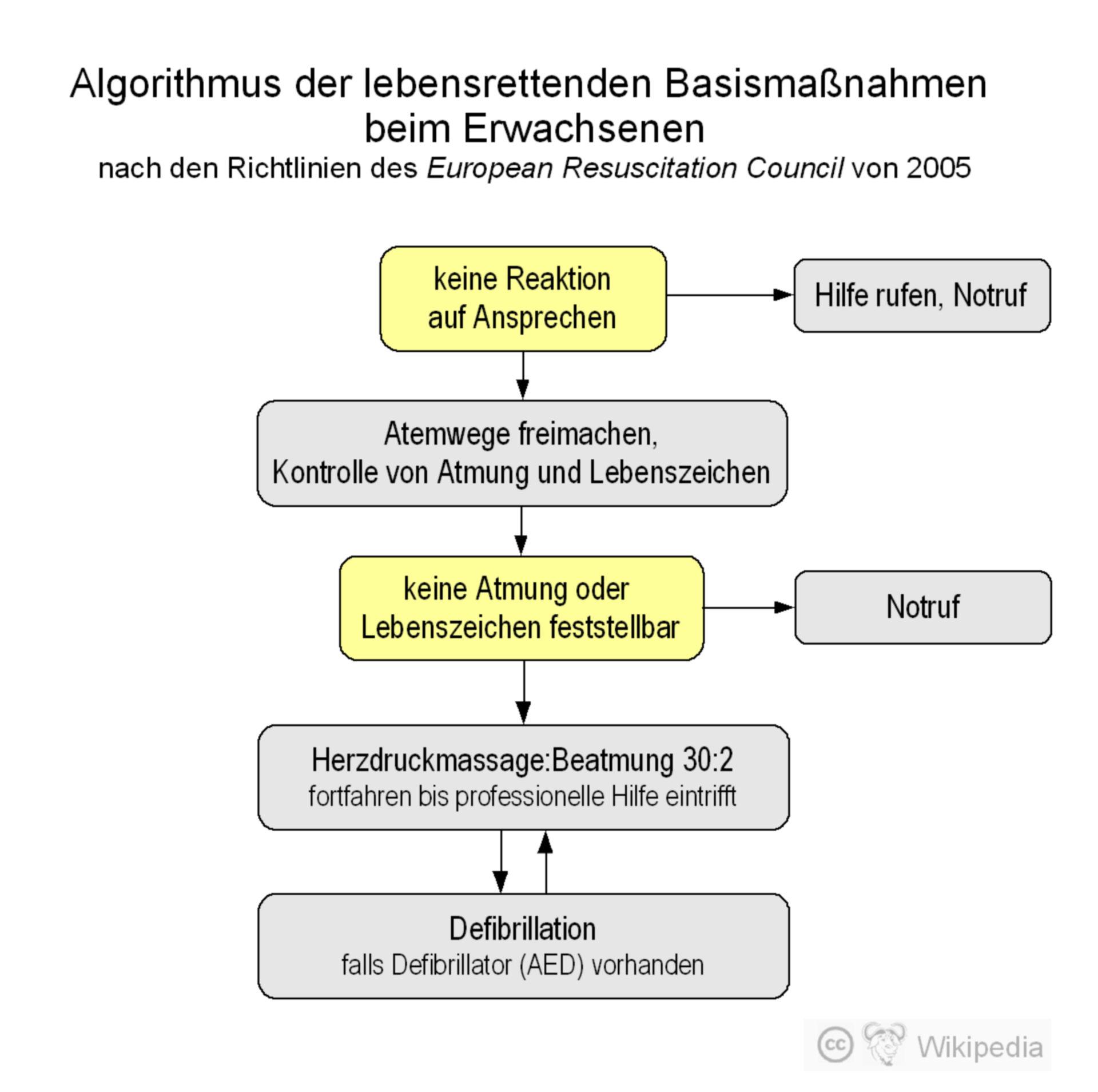 Algoritmo de medidas de referencia para la reanimación de adultos