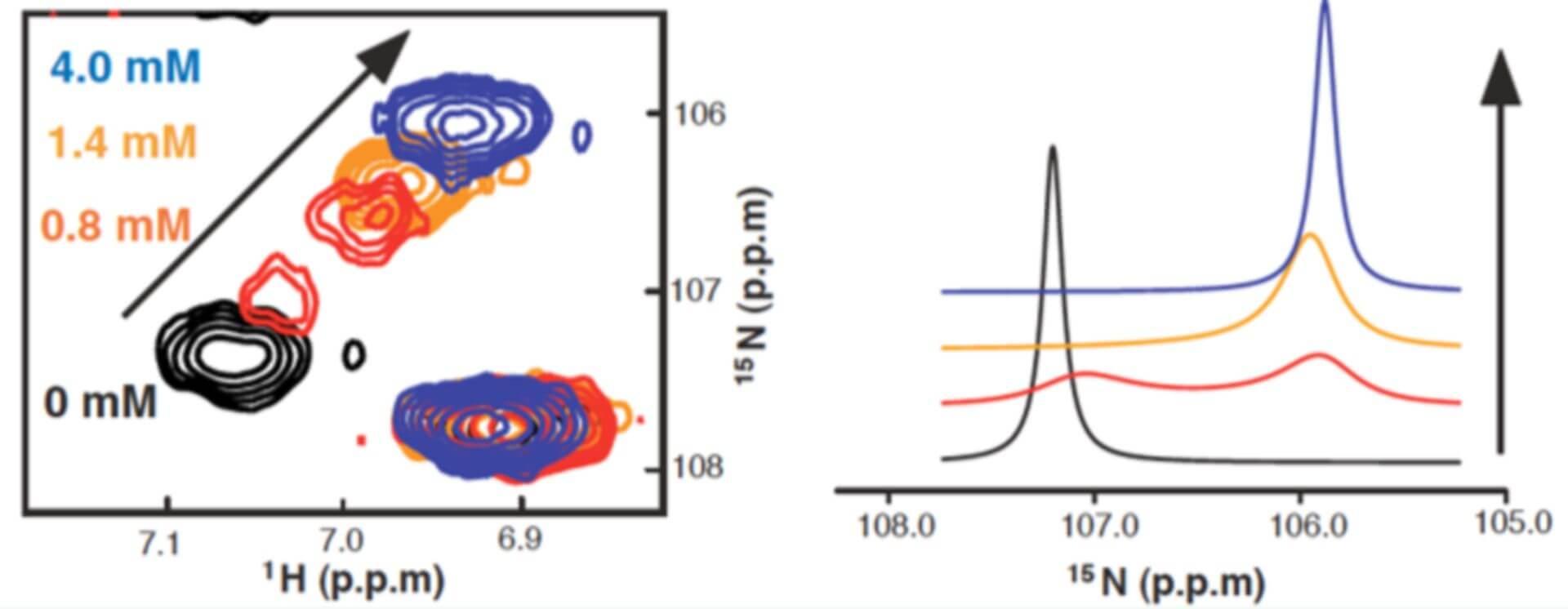 NMR dynamics Analysis