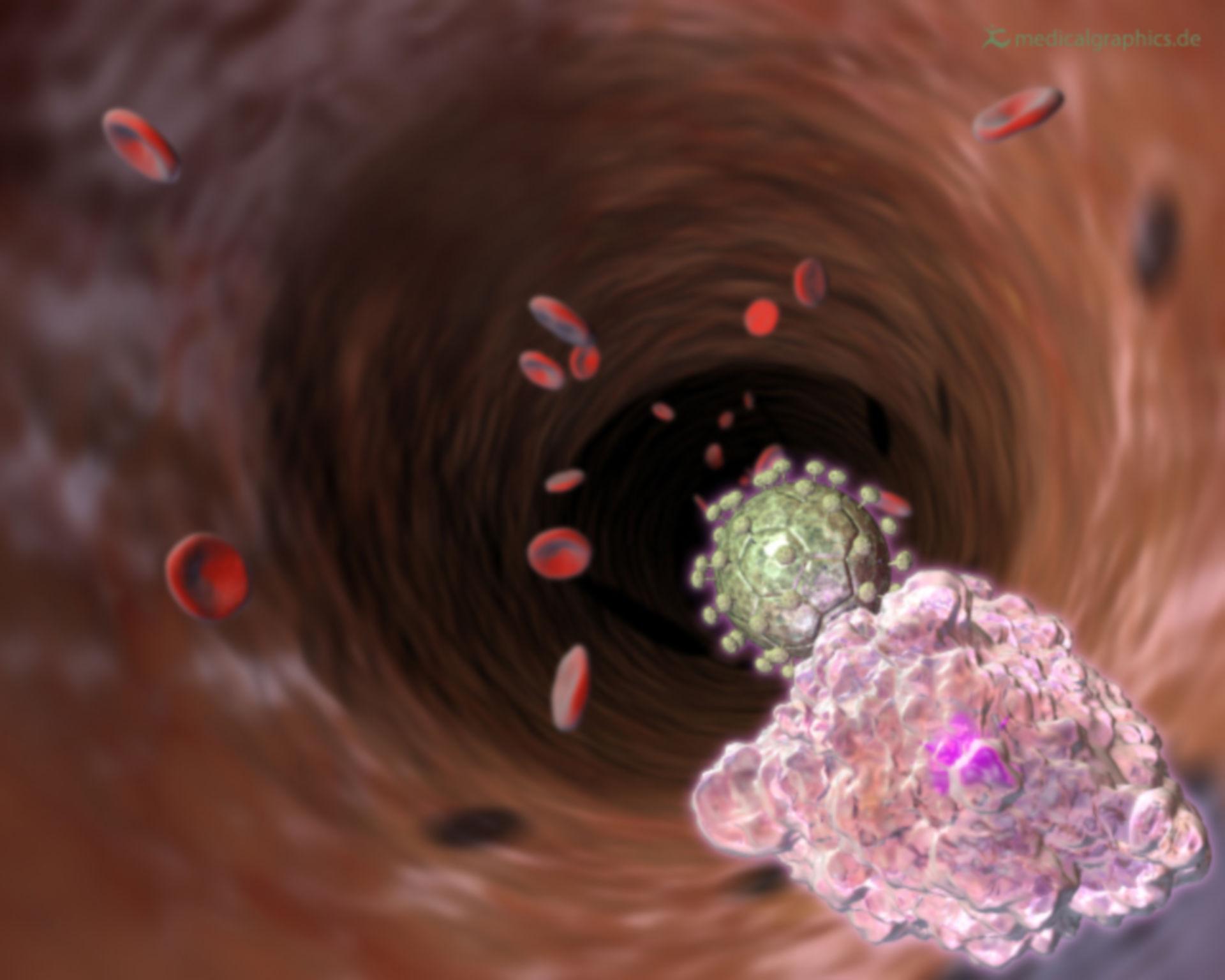 HI virus in blood stream (illustration)