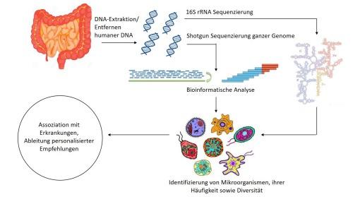 Mikrobiomanalyse_resize
