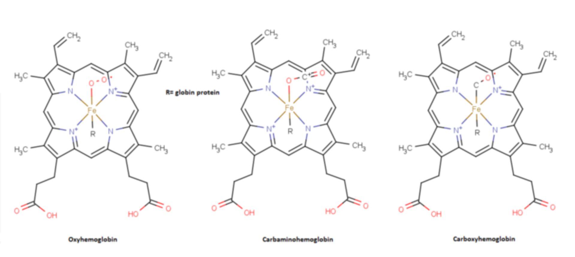 Hemoglobin structures
