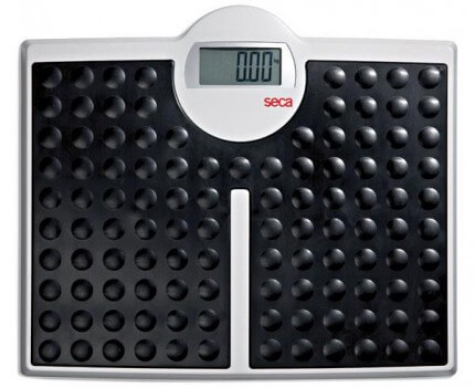 813 personal scale