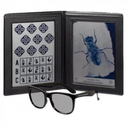 Stereo Vision Test House Fly