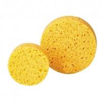 DocCheck Sponges