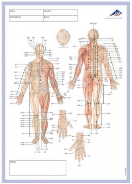 Akupunktur Meridian Notizblock