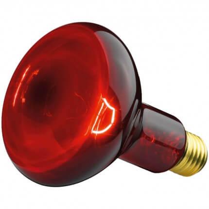 Lampe de rechange pour IL 11