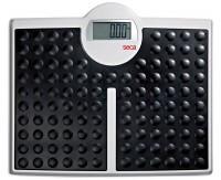 seca 813 personal scale